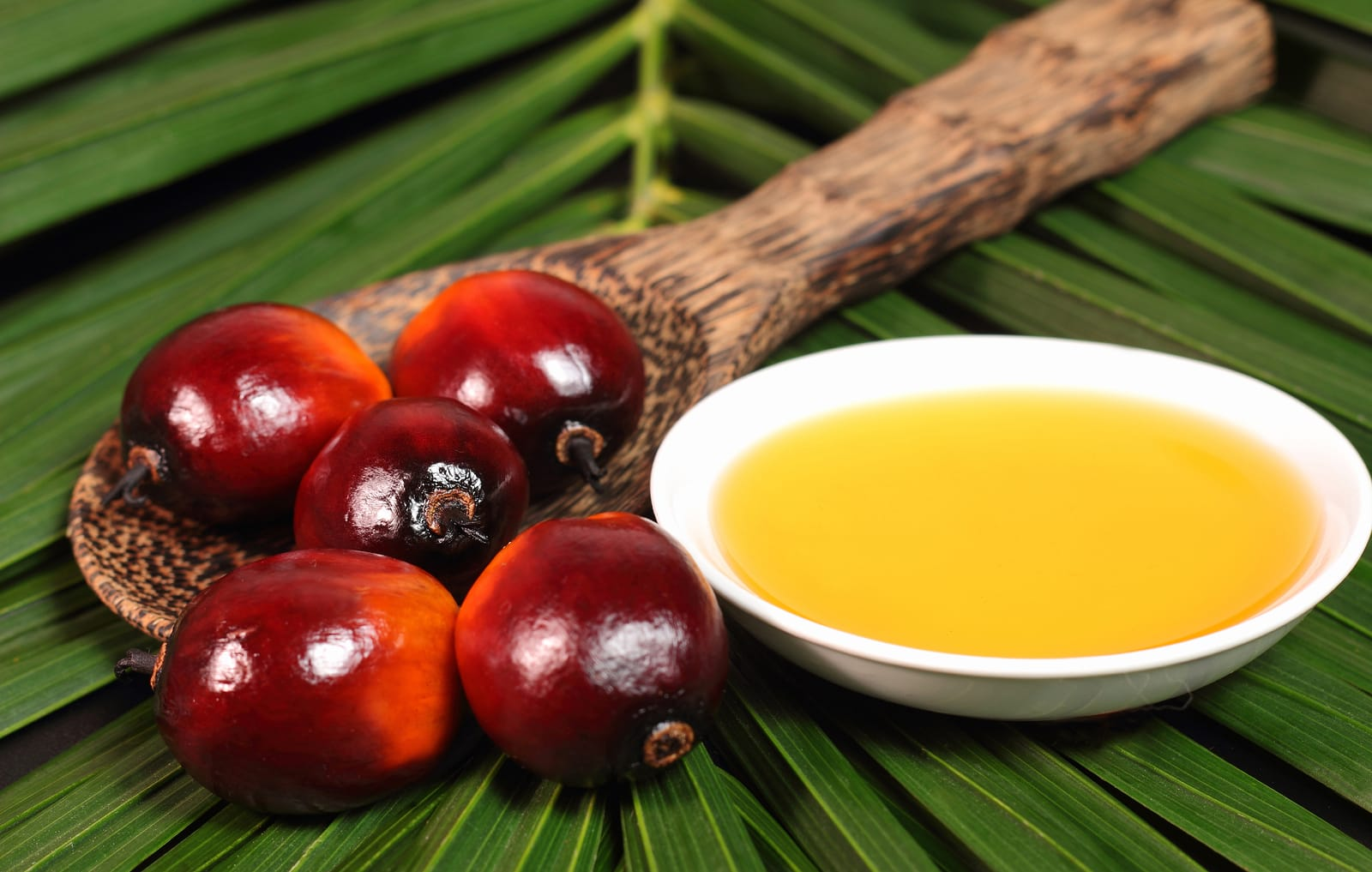 ¿El aceite de palma es nocivo para la salud?